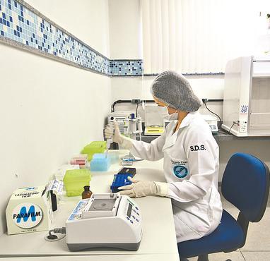 Peritos trabalham desde 2012 em local provisório (ALCIONE FERREIRA DPD.A PRESS)