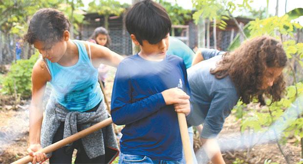 Interação com plantas, bichos e a terra encanta crianças e adultos (Marlon Diego/Esp.DP )